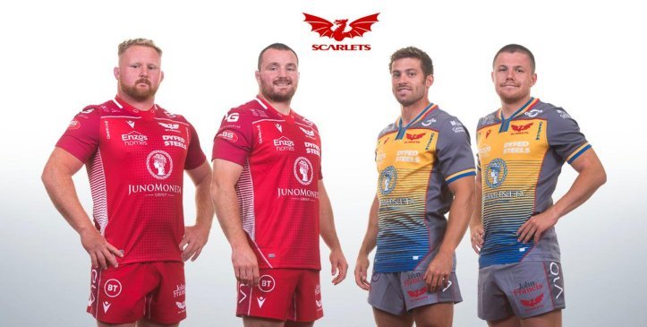 Scarlets Rugby 2019
